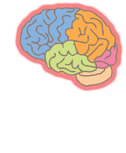 Brain Quiz | Project NEURON | University of Illinois